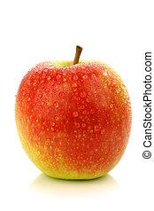 "apple cultivar called ""Pink Lady"""