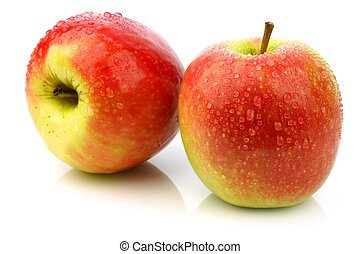 """fresh new apple cultivar called """"Pink Lady"""" on a white background"""