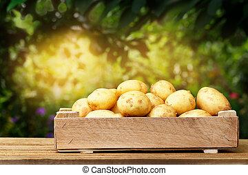 potatoes in wooden crate