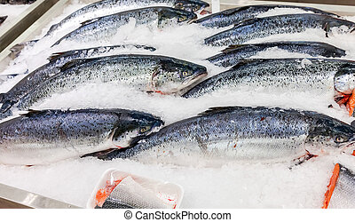 Fresh Norwegian salmon on ice ready to sale
