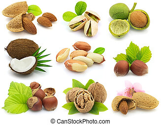 Fresh nuts with leaves - Collage from fresh nuts with leaves