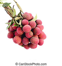 Fresh of litchi fruit and copy space isolated on white backgroun