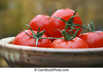 Fresh of the vine - Misted tomatoes sitting outside in a...
