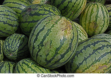 several fresh organic juicy okangan valley watermellons.