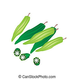 Fresh Okra or Lady Finger on White Background - Vegetable ...
