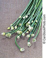 fresh Onion Flower Stem on brown mat
