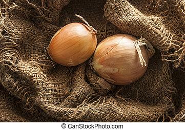 fresh onion in burlap sack bag