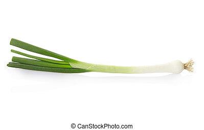Fresh onion on white