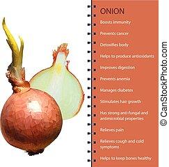Fresh onion polygonal realistic vector illustration