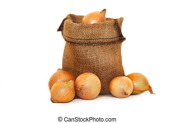 onions in a small sack