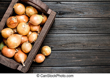 Fresh onions in the box.