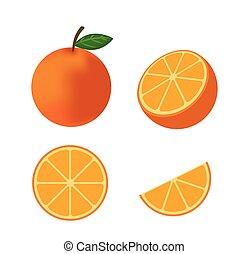 Fresh orange fruit vector isolated set on white background - Vector illustration