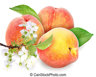 Fresh orange peaches with green leaf