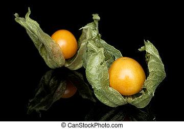 Fresh orange physalis isolated on black glass