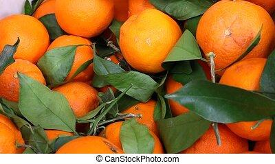 orange - fresh orange