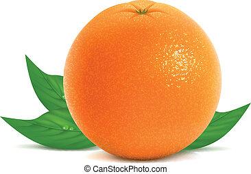 Fresh orange with leaves