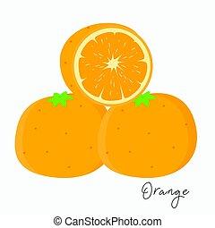 Fresh Oranges Vector