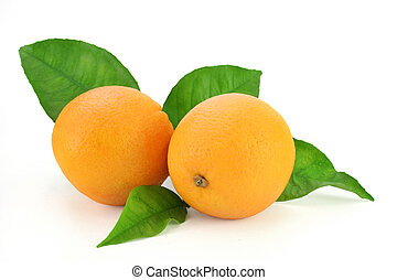Pair of fresh oranges with a few leaves