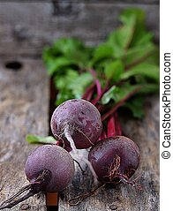 Fresh organic beet root on the wooden backgrownd