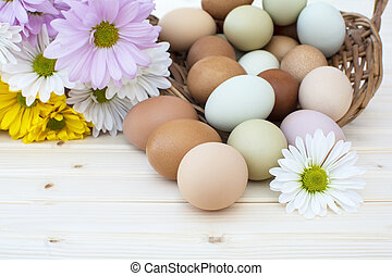 Fresh organic chickeneggs overflow out of basket with chrysanthemum flower