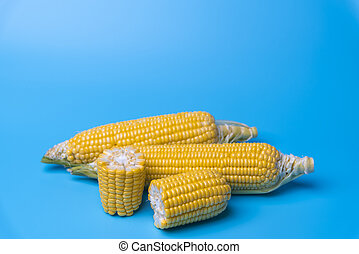 fresh organic corn on blue background
