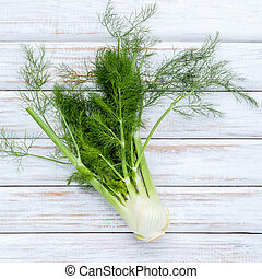 Fresh organic fennel bulbs for culinary purposes on wooden...