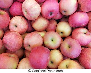 Fresh Organic Fuji Apples