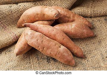 Fresh Organic Orange Sweet Potato against a background
