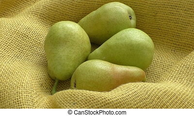Fresh organic pears on yellow sacking. Pear autumn harvest....