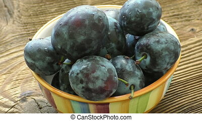 Fresh organic plums. Autumn harvest