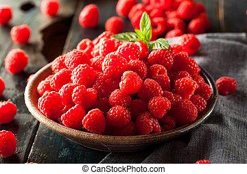 Fresh Organic Raw Raspberries