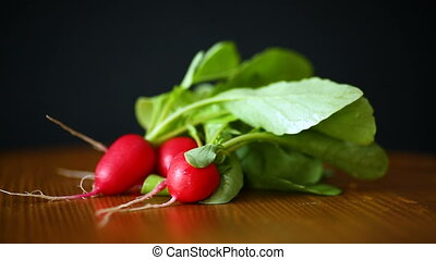 fresh organic red radish on black background - fresh organic...