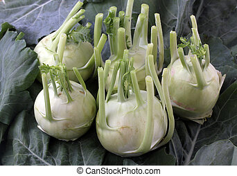 Fresh, organic, vegetable crop of kohlrabi(brassica oleracea...