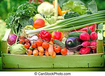 Fresh organic vegetables in crate