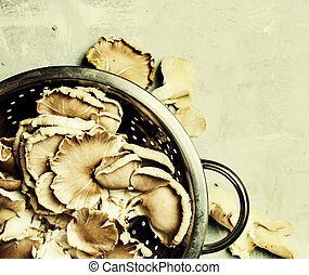 Fresh oyster mushrooms, food background, top view