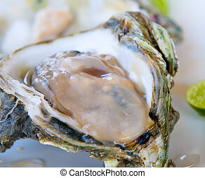 fresh oyster, very shallow focus