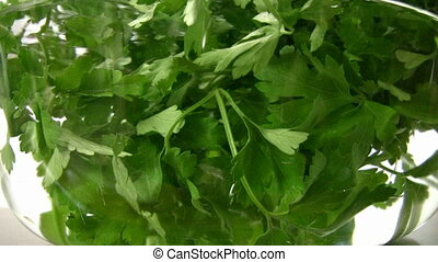 Fresh Parsley in water