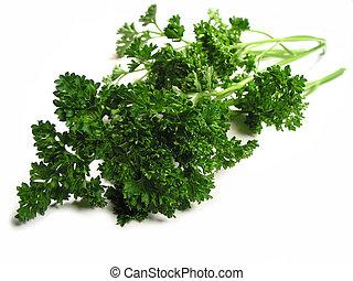 Fresh parsley on white background - Fresh bright green...