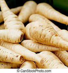 fresh parsley root on market outdoor macro