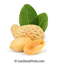 Fresh peanut with leaves.