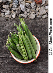 Fresh Peas - A crop of freshly picked organically grown peas...