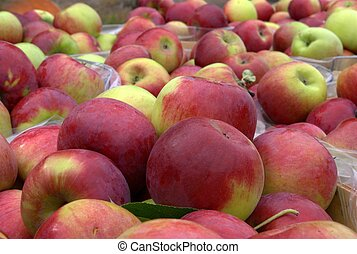 Fresh picked apple ready for sale