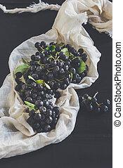 Fresh picked aronia - Fresh picked organic aronia,selective...