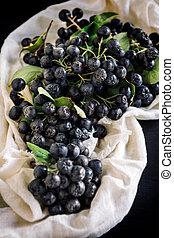 Fresh picked aronia - Served fresh picked aronia,selective...