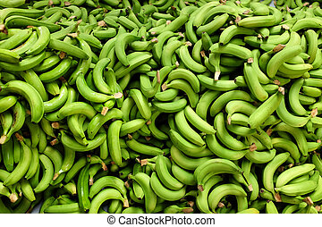 fresh picked bananas - fresh picked green bananas pile in...