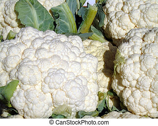fresh picked cauliflower