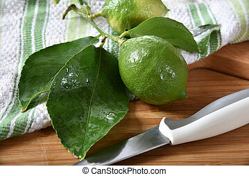 Fresh picked lime - A fresh picked off the tree lime with...