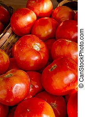 Fresh picked organic red tomatoes sitting in basket at local...