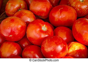 Fresh picked organic red tomatoes sitting in bin at farmers...