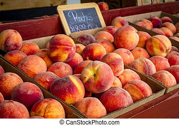 Fresh picked peaches from orchard - Boxes filled with fresh...
